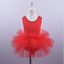 UK-Kids-Girls-Ballet-Tutu-Dress-Gymnastics-Leotard-Dance-Wear-Ballerina-Costume thumbnail 20