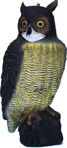 """Piccione BIRD Spaventa Gatti Decoy EXTRA Large 21/"""" in Plastica Grande Decorazione Giardino Gufo"""