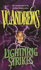 Lightning Strikes by V C Andrews (Paperback / softback, 2014)