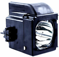 Samsung Bp96-01653a Dlp Hdtv Lamp W/housing 1 Year Warranty W/6,000 Hrs.