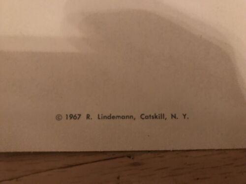 23 Different Unused Cards!! Catskill Game Farm Postcards