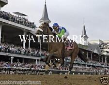 BARBARO 2006 Kentucky Derby Winner Horse Racing 8 x 10 Photo