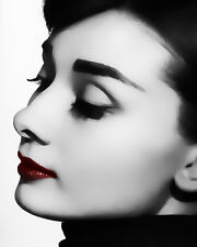 Audrey Hepburn Pop Art #18 Canvas 16 x 20
