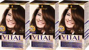 Chestnut Hair Color Dye Brown Shades