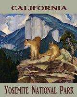 Mountain Lion Yosemite National Park California 16x20 Vintage Poster Free S/h