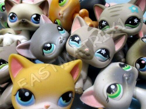 Littlest Pet Shop Lps Lot 2 Random Blemished Shorthair Siamese Cats Authentic