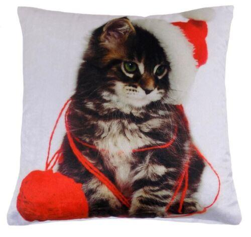 Filled Christmas Cat Kitten Red White Velvet Cushion 43.2cm 43cm c40