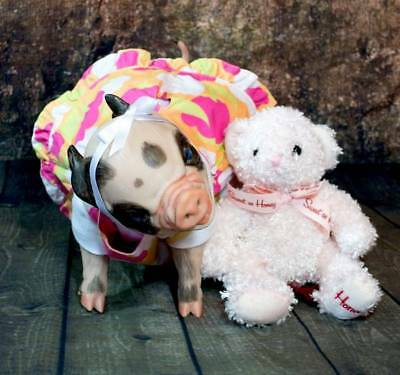 """Customized Reborn Pig /""""Fawnn/"""" powderscented/&magnetic pacifier"""