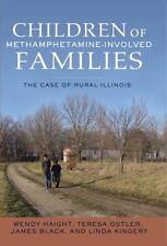 Children of Methamphetamine-Involved Families: The Case of Rural Illinois