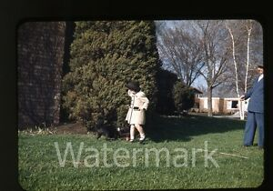 1950s-red-border-Kodachrome-photo-slide-Young-Girl-and-dog-by-tree