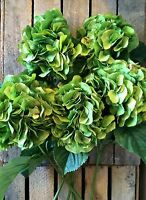 Bunch Of 5 Large Green Faux Silk Hydrangeas, Realistic Artificial Flowers