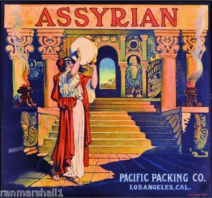 Los Angeles California Assyrian Syria Orange Citrus Fruit Crate Label Art Print