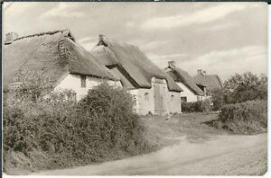 Ansichtskarte-Vitte-Hiddensee-Norderende-Reethaeuser-seltene-Aufnahme-s-w