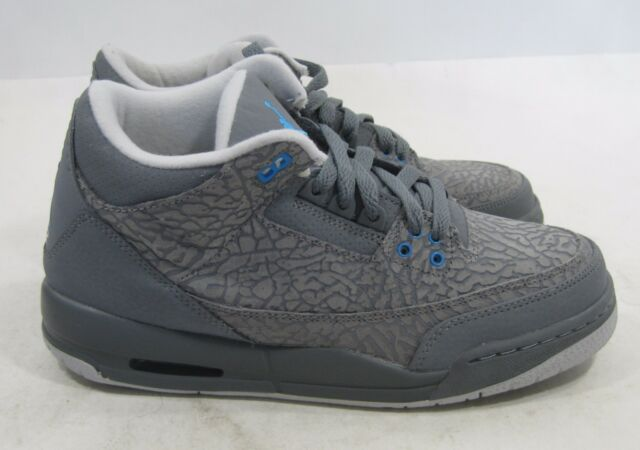 46024c43527e Air Jordan Retro 3 Flip Cool Grey blue Glow GS Elephant Print 6y ...