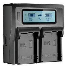 LCD Dual 2-Battery Charger For Panasonic VW-VBN130 VW-VBN260 VW-VBN390 With USB