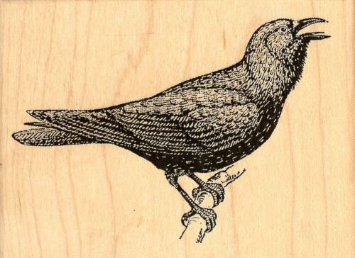 Bird Squawking Crow Halloween Bird Wood Mounted Rubber Stamp JUDIKINS 3720G New