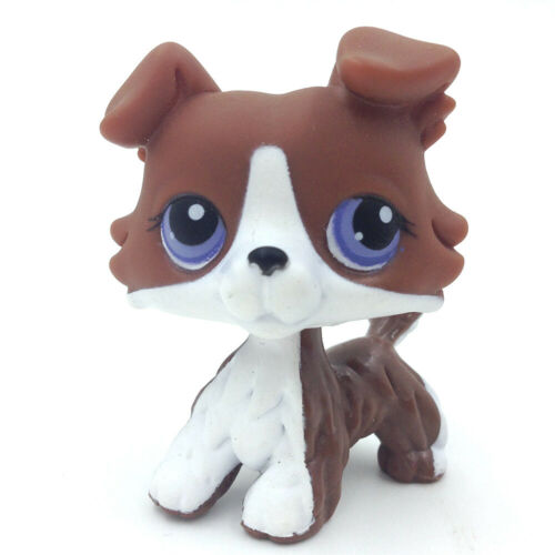 Lps Marrom Branco Collie Cachorro Littlest Pet Shop Cachorrinho Olhos Roxo Coleção Brinquedos