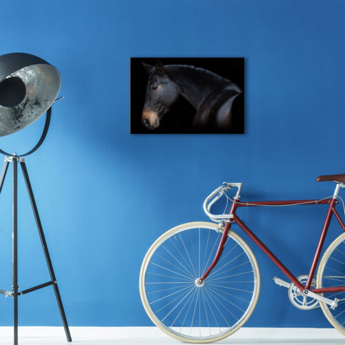 Cavalo Preto Marrom Escuro Funky Animal Canvas Wall Art grandes impressões foto