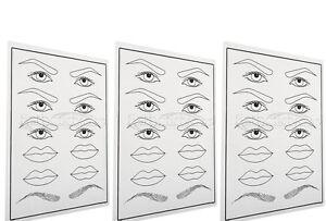 3-mal-Augenbrauen-Lippen-Ubungshaut-Practice-Skin-Microblading-Tatoo-Permanent