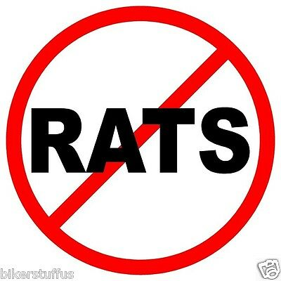NO RATS (LOT OF 3) STICKER HARD HAT STICKER HELMET STICKER TOOLBOX STICKER