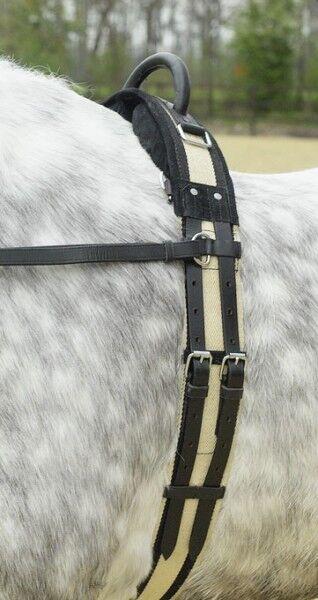Busse Salto in lungo con Maniglia Longe Affondo Affondo Affondo Cintura Msh Sh P Vb   Bianco Blu ced55f