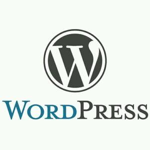 WordPress Unlimited web hosting domains SSD  cPanel WebHosting 6 year plan