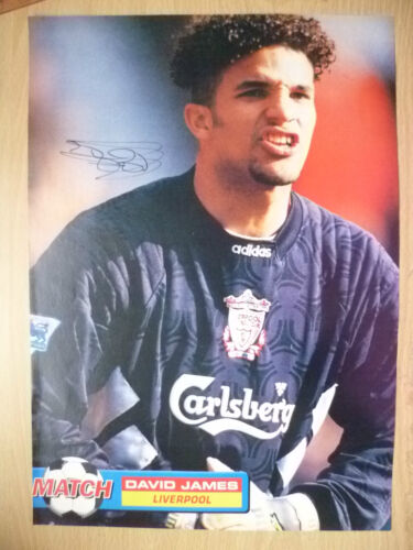 100% Genuine Hand Signed Press Cutting of Liverpool FC Player DAVID JAMES