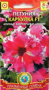 Black Triumph Seeds from Russia. Petunia flowers