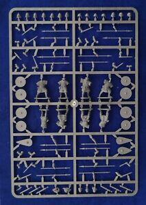 Victrix-28mm-Dernier-Saxons-Anglo-Danois-Grappes