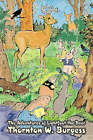 The Adventures of Lightfoot the Deer by Thornton W Burgess (Paperback / softback, 2008)
