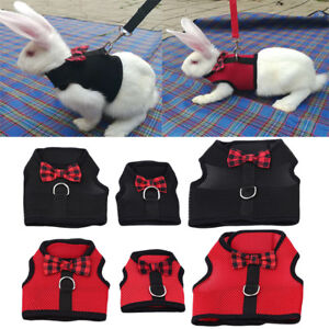 Leash-Small-Pet-Control-Harness-Dog-Cat-Puppy-Mesh-Walk-Collar-Safety-Strap-Vest