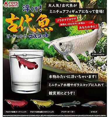The Pukkari ancient fish mascot Gashapon 5 set mascot Toys spirits Float !