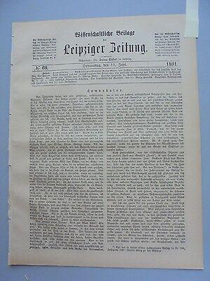 FäHig 1891 69 Homunkulus