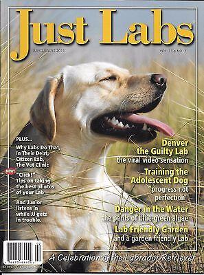 Just Labs dog magazine Denver Training the adolescent Friendly garden Algae