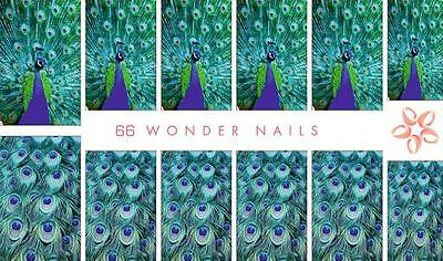 WonderNails 66 EU Made Water Decals Nail Stickers Tattoo Peacock Feather