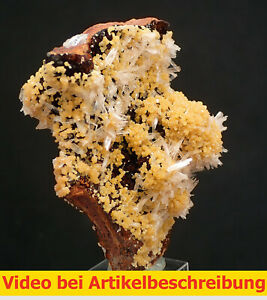 7025-Mimetite-Hemimorphite-ca-8-7-5-cm-Campana-Vein-Ojuela-Mine-Mexico-MOVIE