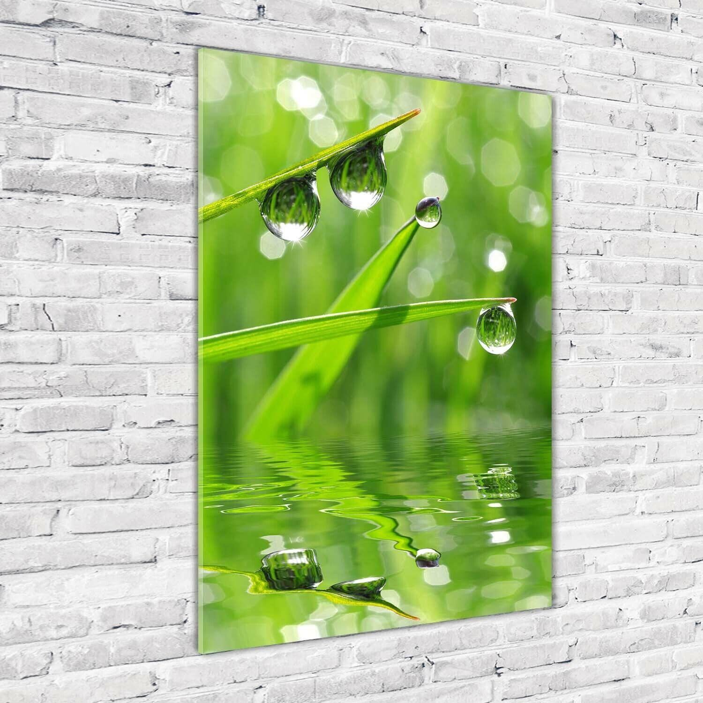 Wand-Bild Kunstdruck aus Hart-Glas Hochformat 70x100 Gras Wassertropfen