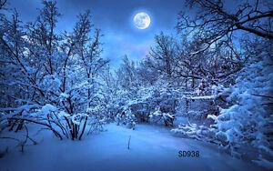 20x10FT Winter Snow XMAS Vinyl Photography Backdrop Background Studio Prop SD938