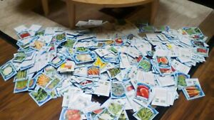 "Random Garden vegetable seeds variety 10 pack lot ,Lettuce,Kale Beet Onion~~"""