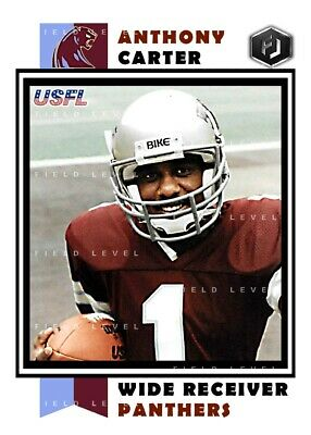 ACEO USFL ANTHONY CARTER MICHIGAN PANTHERS HAND MADE ART CARD