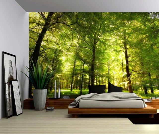 Buy Green Forest Trees Nature Large Wall Mural Vinyl