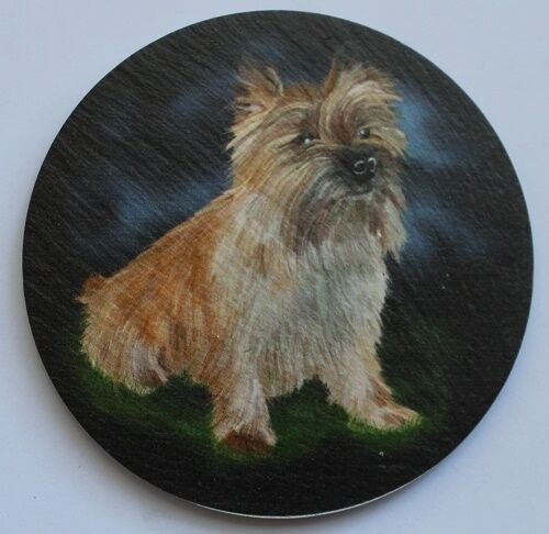 Cairn Terrier -  Dog - Coaster - Welsh Slate