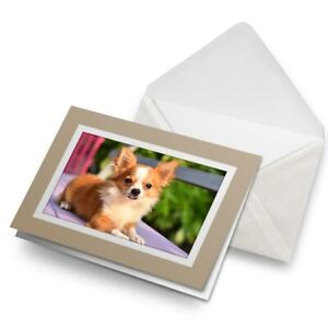 Greetings-Card-Biege-Cute-Little-Chihuahua-Puppy-Dog-21338