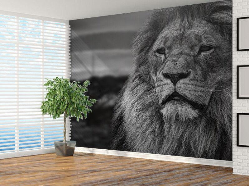 Löwe Bild bei Sonnenuntergang Schwarz und Weiß Foto Wandtapete Wandgemälde