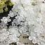 10 yard White Flowers Cotton Crochet Lace Trim Wedding dress clothing accesories