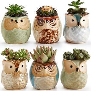 6pk 2 5 owl plant flower pot decorative kitchen herb garden planter