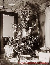 Dolls in a Preambler Under Christmas Tree  -1900- Historic Christmas Photo Print