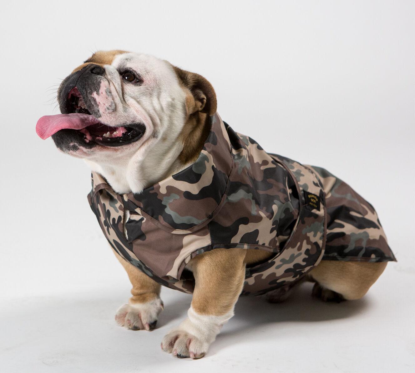 IMPERMEABILE MIMETICO PER BULLDOG INGLESE FASHION DOG MADE IN ITALY