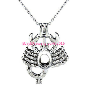 K182 Silver Bead Cage Scorpio Zodiac Locket Necklace Horoscope Stainless Chain