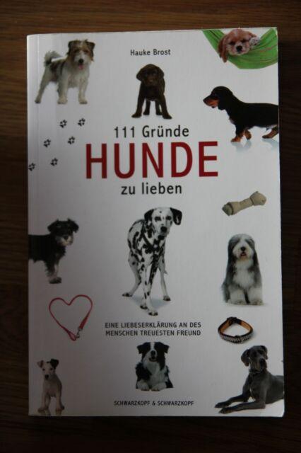 111 Gründe, Hunde zu lieben von Hauke Brost (2009, Taschenbuch)